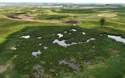 Wetlands Restoration Project – NDGNF – 09-22-2020
