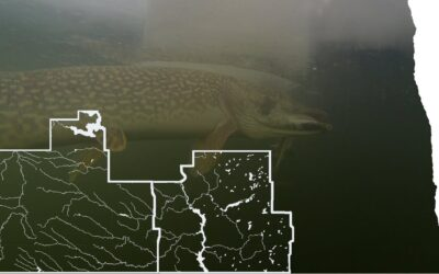 Ice Fishing Reports (Part 1 of 4) – South Central and Southwest Districts – NDGNF – 12-01-2020